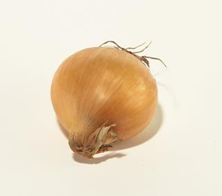 Lök gul sweet onion