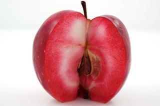 Äpple red love