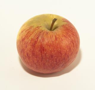 Äpple Royal Gala